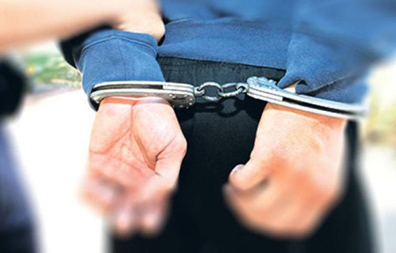 privodjenje, hapsenje