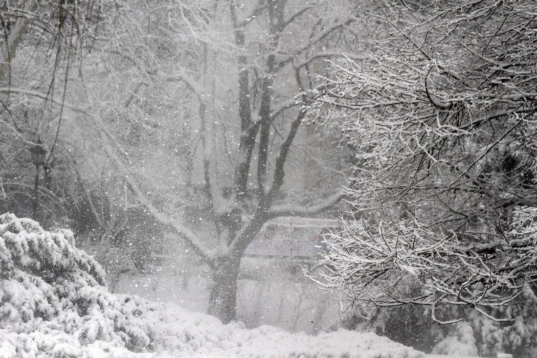 zima, sneg, 9