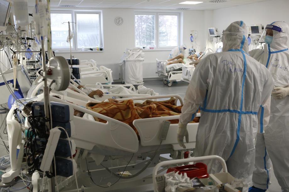 kovid, beograd, bolnica, pacijenti, lekari